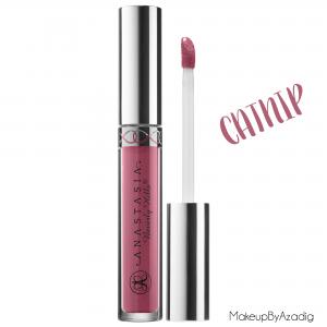 makeupbyazadig--anastasia-beverly-hills---france---sephora---liquid-lipstick---modern-renaissance---brow-powder--catnip