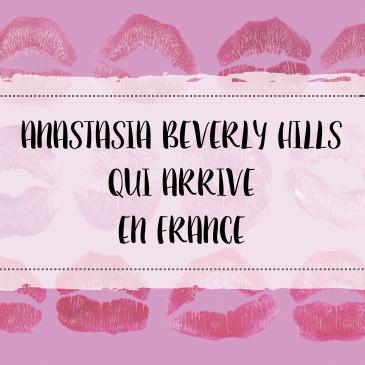 makeupbyazadig--anastasia-beverly-hills---france---sephora---liquid-lipstick---modern-renaissance---brow-powder-miniature