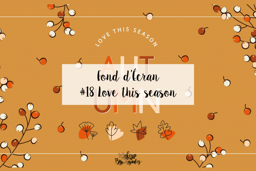 fond-decran-wallpaper-automne-leaves-autumn-season-ordinateur-iphone-samsung-mac-macbook-imac-pc-makeupbyazadig-miniature