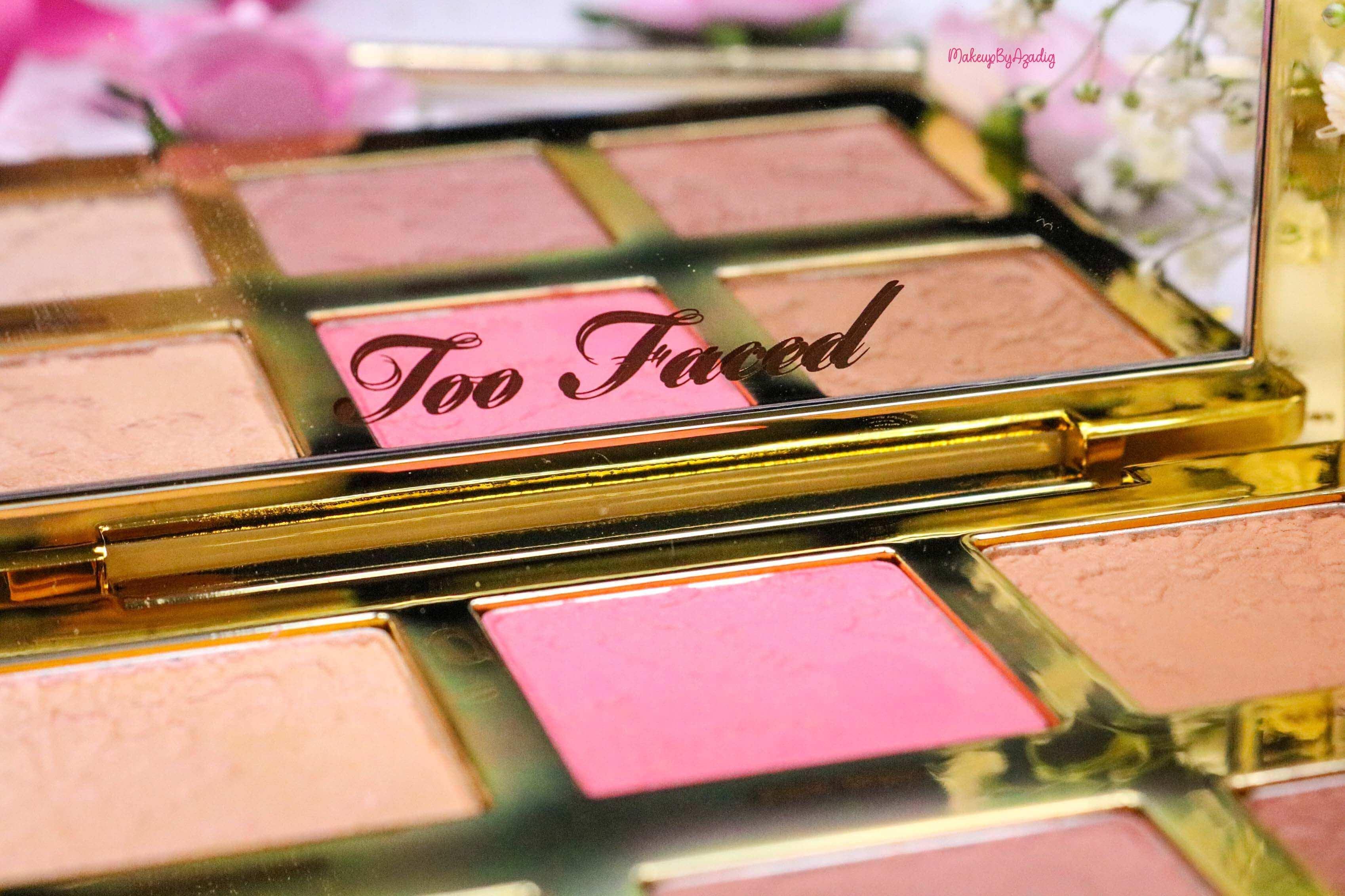 revue-review-palette-teint-natural-face-too-faced-makeupbyazadig-sephora-france-avis-prix-swatch-blush-highlighter-logo